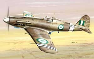 Special Hobby 1/48 FIAT G.55