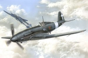 Special Hobby Special Hobby Fiat G.55 Sottoserie 0, 1/48 - 48066
