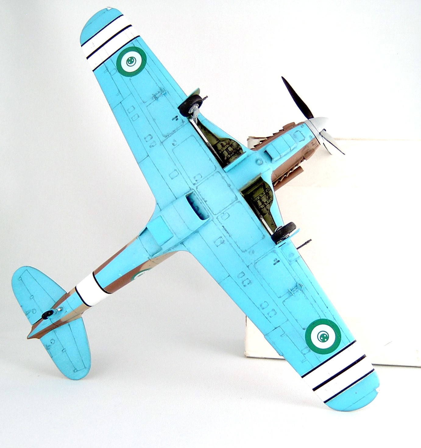 STORMO! Special Hobby 1/48 FIAT G 55A by Vince Tassone